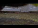 ИграКакающая собака Ду Собираем какашки Doggie Doo Funny Pooping Оригинал