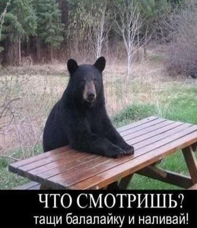 Олег Baloo, 24 марта , Киев, id8284989