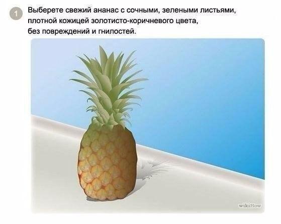 Как хранить свежий ананас в домашних условиях
