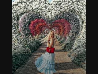 Цветочное чудо дубая - dubai miracle garden 🌸