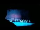 Фрагмент балета Лебединое озеро. Мариинский4 театр. 14 ноября 2017.