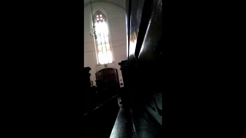 орган кафедрального собора Калининграда