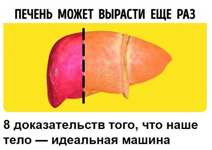 https://pp.userapi.com/c543103/v543103150/3065b/tCz6hrcWd0k.jpg
