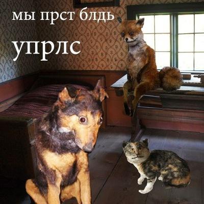 Vadim Vadim, Москва, id192034708