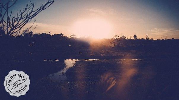 8 вещей, которые можно сделать до 8 утра
