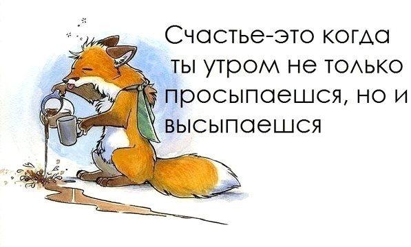 http://cs419120.vk.me/v419120413/9b86/qmBvPu-L9C0.jpg