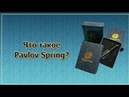 Что такое Pavlov spring от Global Trend company? Нано бальзамы. Рассказывает Асхат Алиев.