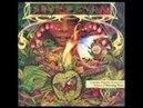 Spyro Gyra Morning Dance Full Album