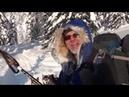 Лыжи две ездовые собаки мороз 30