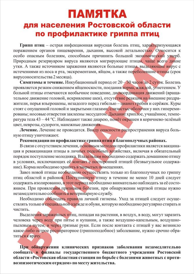 В Ростовской области принимаются меры по недопущению распространения гриппа птиц