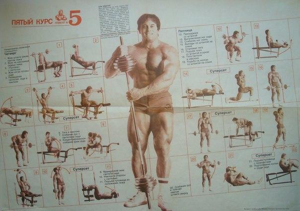 Система строения тела джо вейдера книга