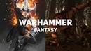 Всё что нужно знать о вселенной Warhammer Fantasy