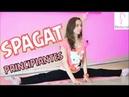 Como Hacer SPAGAT PRINCIPIANTES, Flexibilidad / Perfecta de Pies a Cabeza (Dani Zilli)