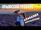 Где ЛАВАНДА Крымский прованс!