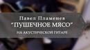 Павел Пламенев - Пушечное мясо (на акустической гитаре)