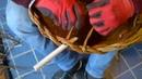 Chiusura di un cesto con manici doppi e treccia a 2 capi. 3 di 3
