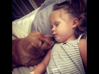 Wake up, little human