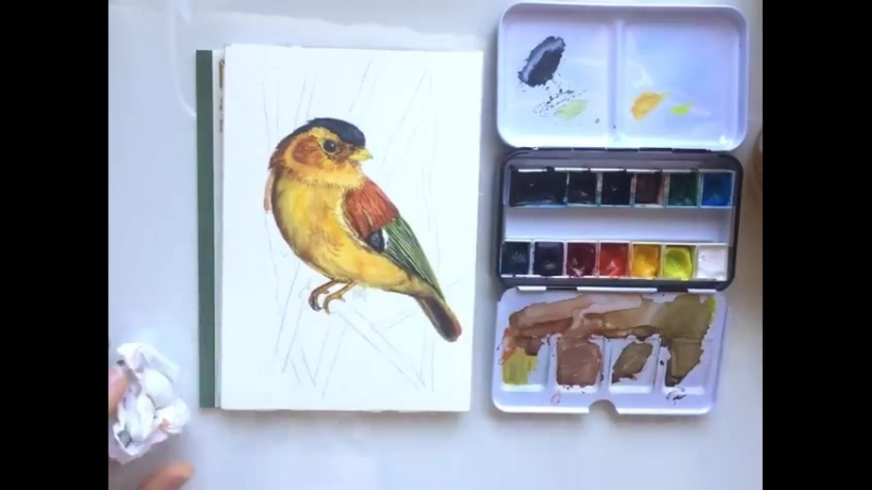 Well, here it is - a video of another birdie for you, my 😋 And here you can see how a missed paint stroke can be transformed in
