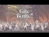 Cato Bonita!.mp4