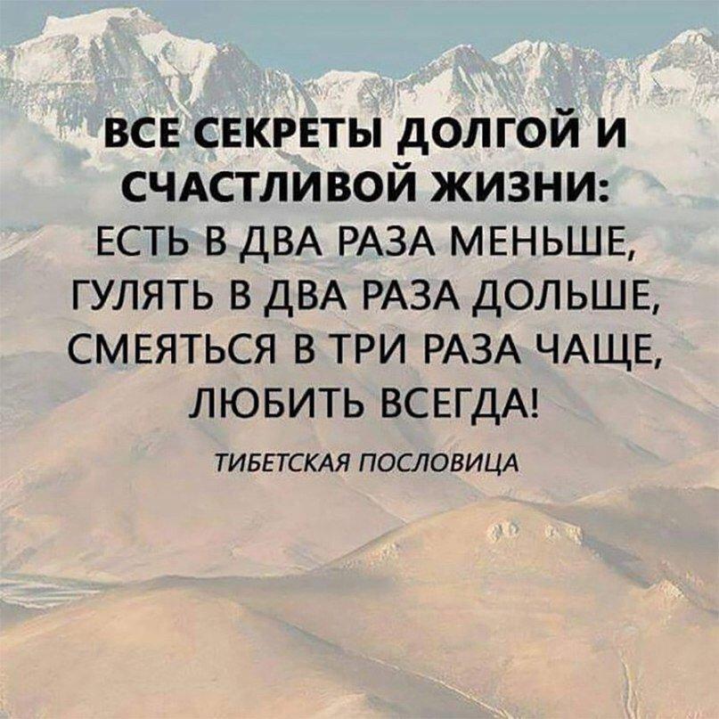 https://cs7051.vk.me/c543108/v543108554/521b5/tHvGixtqwSc.jpg