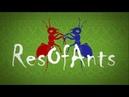 VIDEO x16 Ant farm DAY 28 Муравьиная ферма онлайн online Муравьи Ants