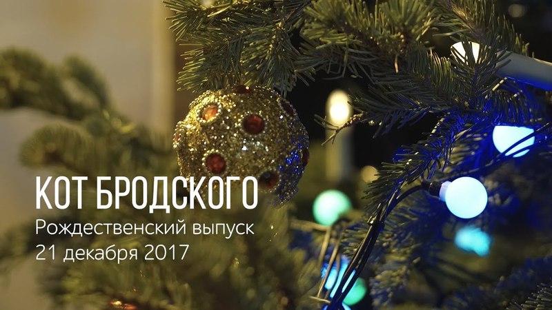 Кот Бродского 12 «Дух Рождества»