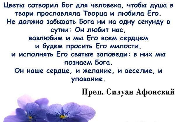 http://cs313831.vk.me/v313831440/2fa9/2uazjY0Utg4.jpg