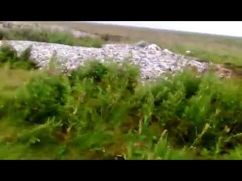 Путина-2018: Главвное богатство Камчатки выбросили в тундру ok.ru/profile/575292955546/statuses/68584066673562