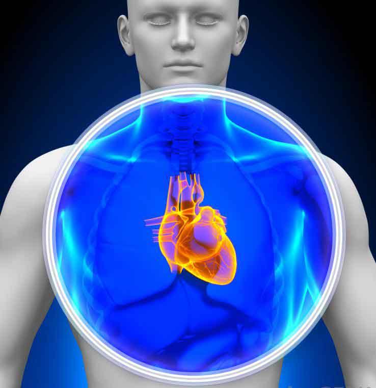 Дигоксин сам по себе не может вернуть сердце пациента к нормальному синусовому ритму