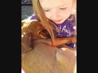 Девочка спела песенку собаке из приюта
