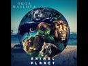 Instrumental Maslova Animal Planet