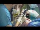 Shifahair лучшая клиника по пересадке волос в Турции