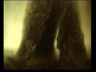 (mf) Ёжик в тумане.3gp