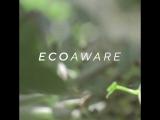 Eco Aware