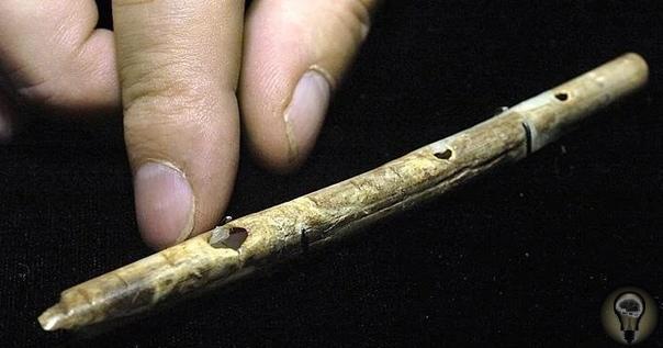 О древних флейтах возрастом более 31 000 лет, найденных в пещере Холе-Фельс на территории Германии
