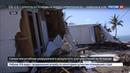 Новости на Россия 24 • Пострадавшим от ураганов Трамп выделит 50 миллионов долларов