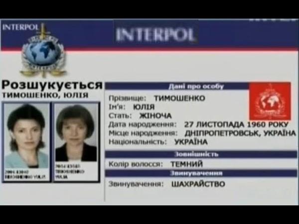 Документальний фільм Кримінальна зграя Юлії Тимошенко