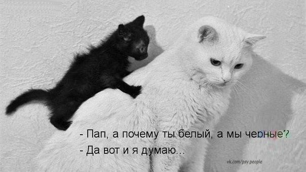 Да уж вопросец )))