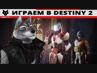 Играем в Destiny 2 - 18.11.2018