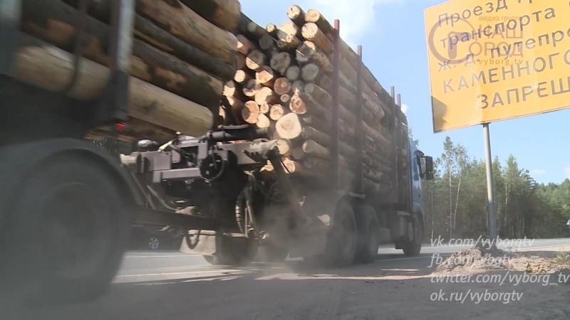 Перевозка древесины. Прокурорская проверка