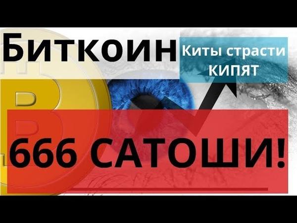 Биткоин Киты страсти КИПЯТ 666 САТОШИ! $18500 за BTC потому что..