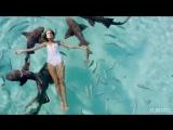 DE GRAAL' - Celestial (Toricos Remix) ALIMUSIC VIDEO