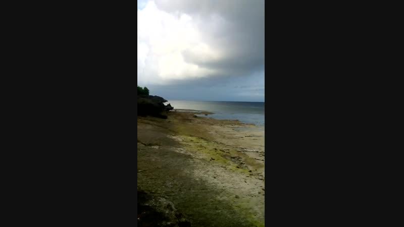 Фед и Медвед. Moalboal, о. Себу, Филиппины.