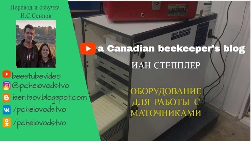 Иан Степплер оборудование для перевозки и инкубации маточников на промышленной пасеке