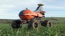 Робот-фермер ищет на полях сорняки и вредителей