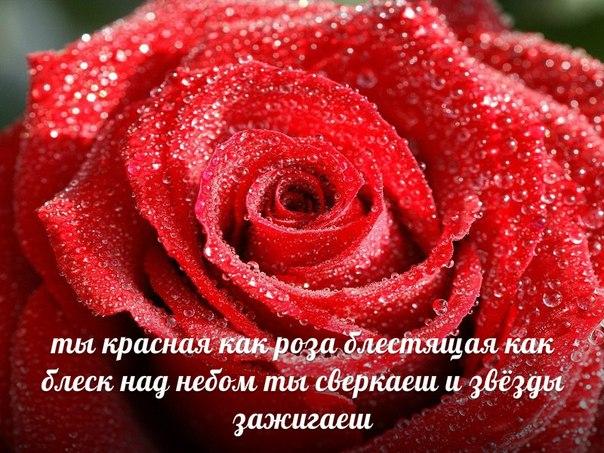 Цветы самой прекрасной - fa