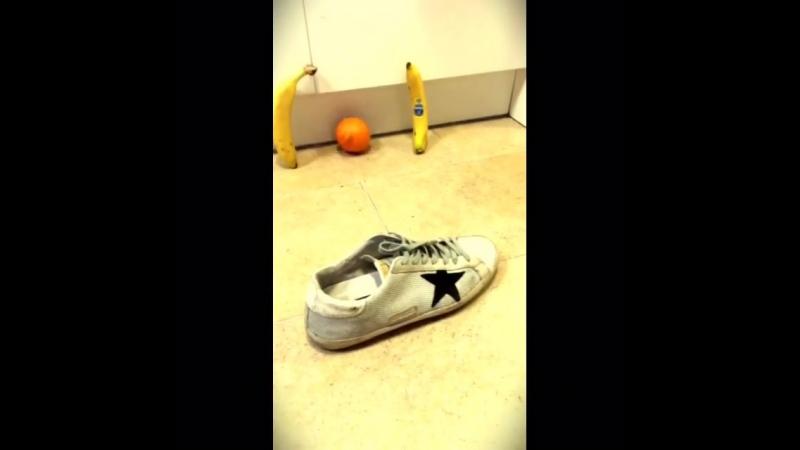 Fruitball championship...Golden Goose boot for the scorer