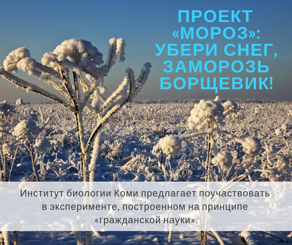 https://pp.userapi.com/c849524/v849524839/80a97/KpWz65KQxQQ.jpg