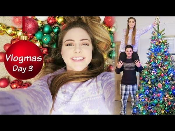 Vlogmas Day 3   Putting Up The Christmas Tree