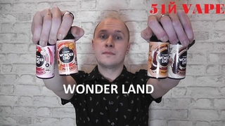 Обзор на WONDER LAND ⁄STAGVAPE ⁄51Й VAPE